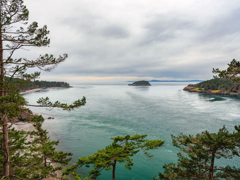 Deception Pass, Bridge, Beach Trail, 1 mile, back trail, Oak Harbor, Washington, beautiful, trail, hiking, nature trips, views, tranquil, tranquility, beach, coastline