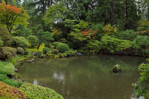 Portland, Oregan, pond, Japanese garden, zen, fall, orange, red,