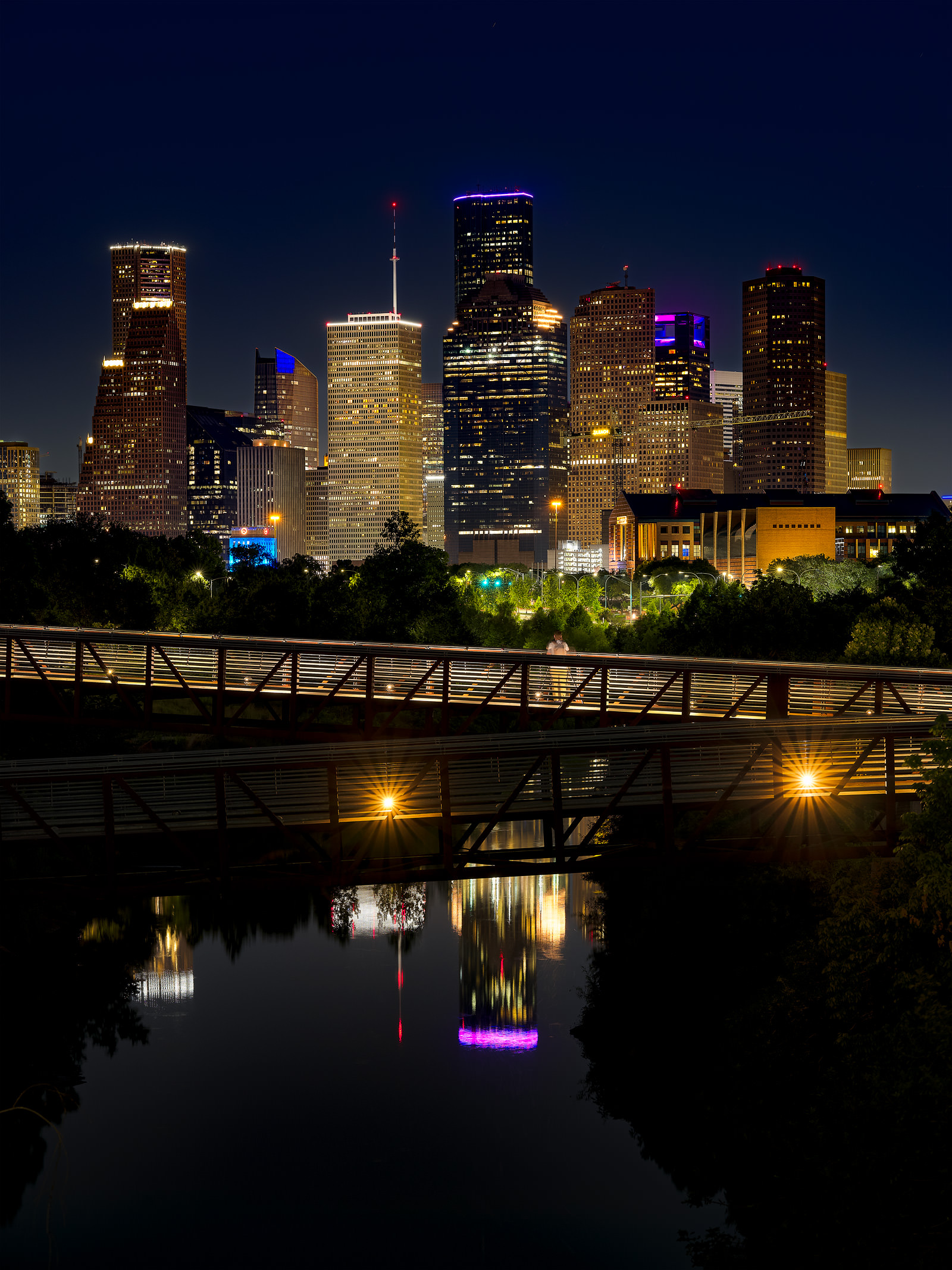 "Houston has many nicknames. Among them ""Space City"" as well as "" bayou city"". The buffalo bayou runs right through the city and..."